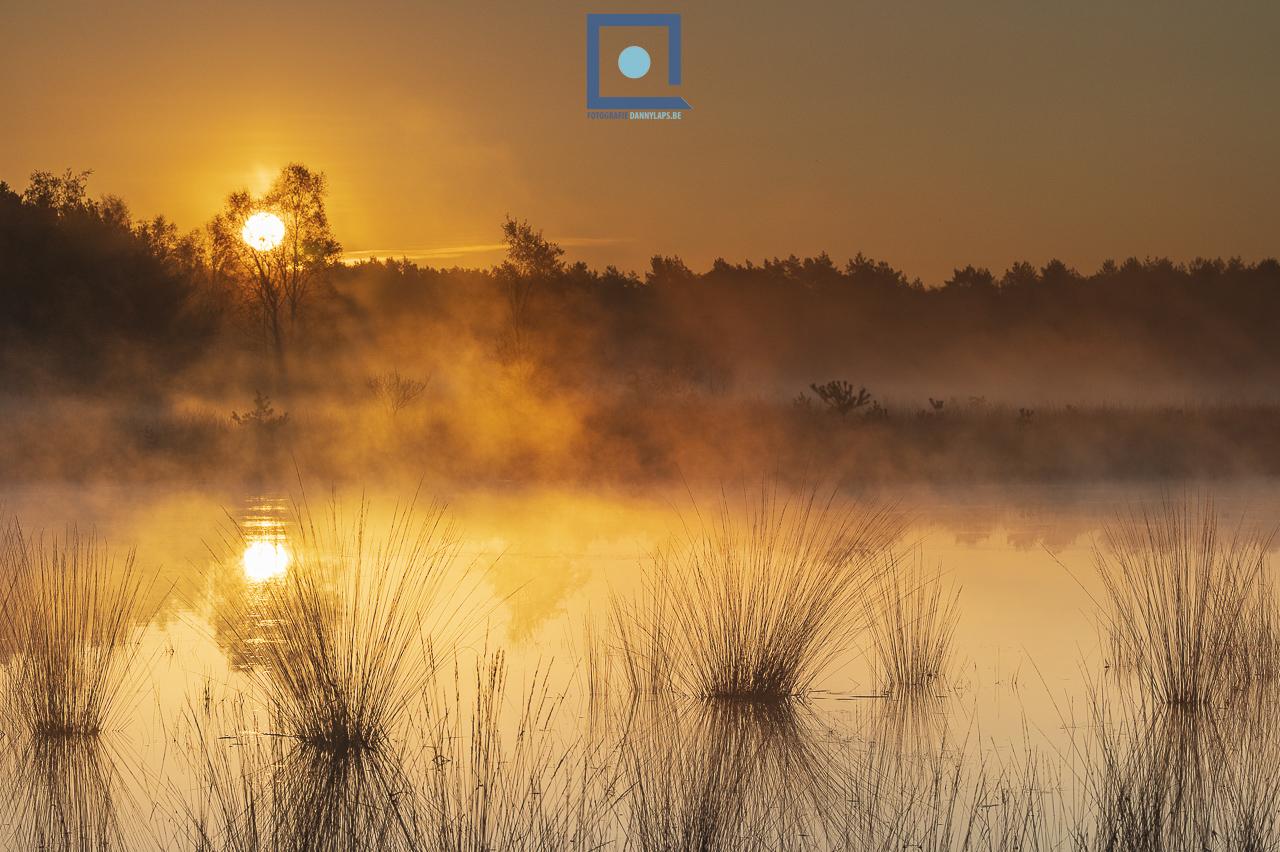 Klein Schietveld, ven waar de Noordse Witsnuitlibel voorkomt. Landschapsfoto van 2020.