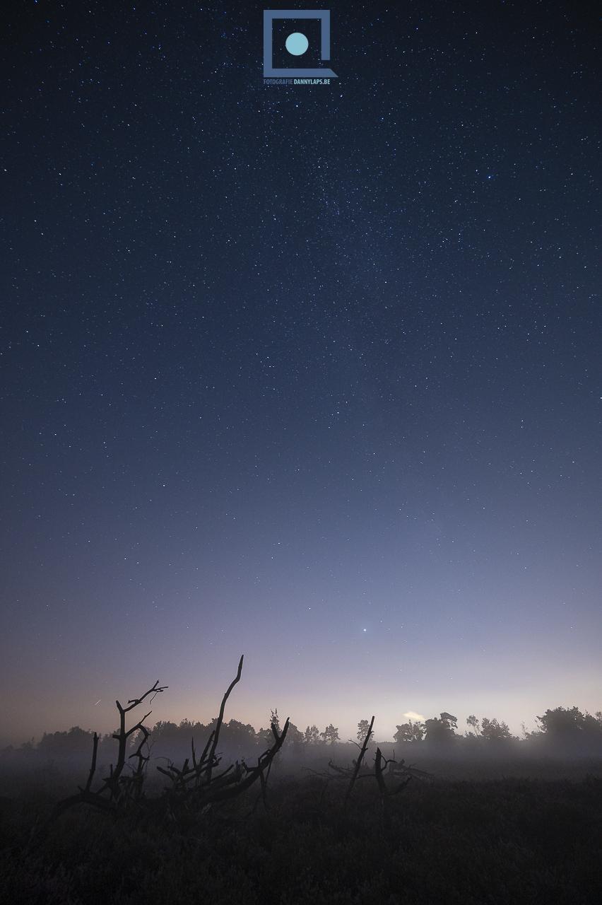 Sterren boven de Kalmthoutse Heide