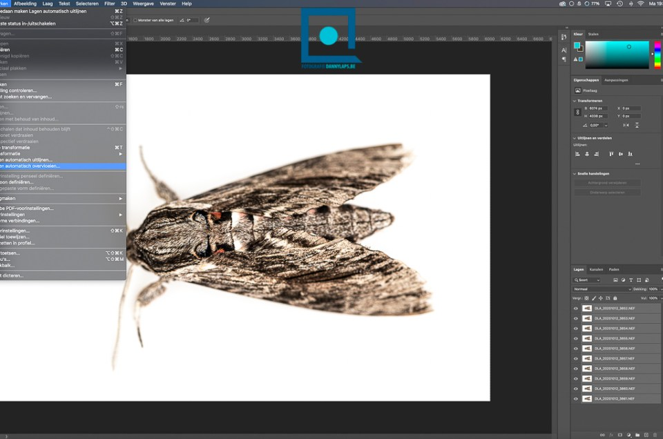Focus stacking met Lightroom en Photoshop: alles scherp!