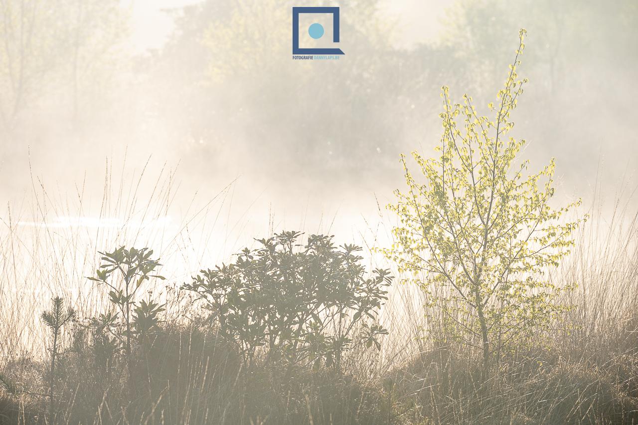 Landschappen - Landschapsfotografie met de telelens