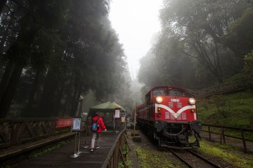 Alishan railway × 4 routes you could Ride