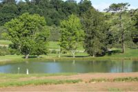 Bass and Catfish Pond