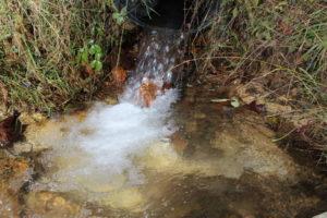 spring water2