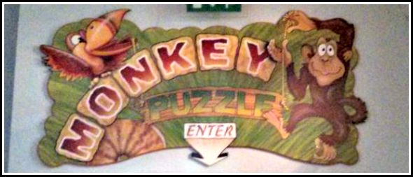 Monkey Puzzle Maldon – Soft play in Madison Heights