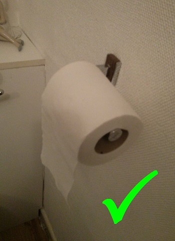 Which way should the toilet roll hang - Correct.