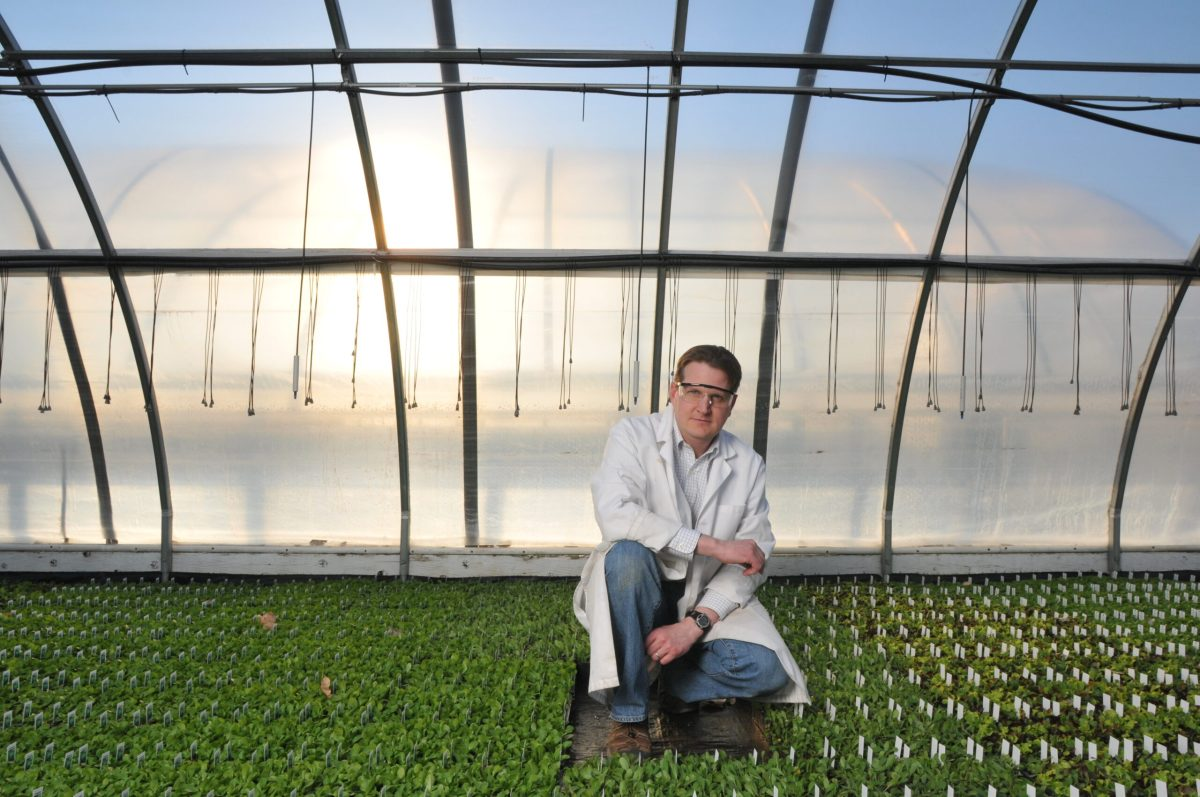 Agricultural water polluted with permanently chemicals could taint generate Colorado research discovers