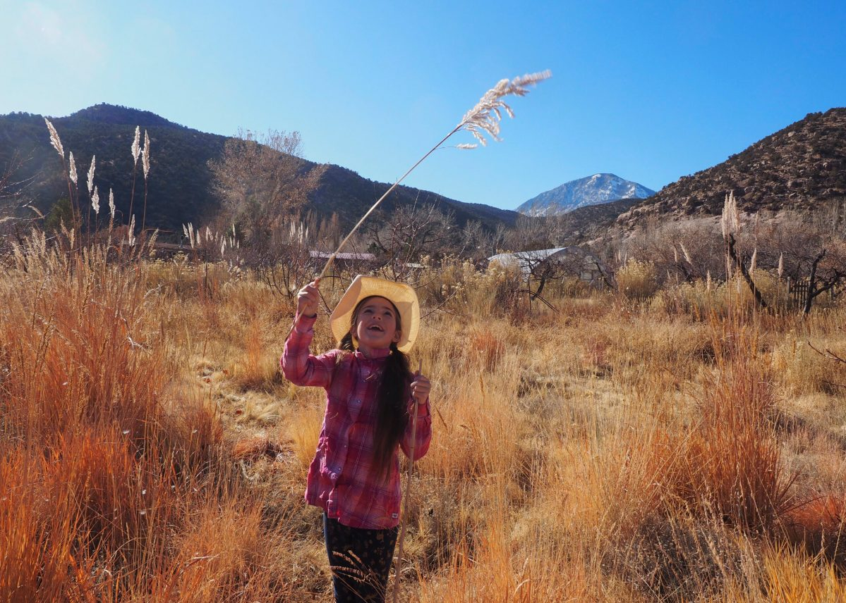 Linking to nature benefits youngsters yet they may require aid handling a world in peril
