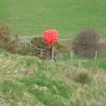 Balloons getting closer