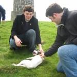 Petting Timmy Troma