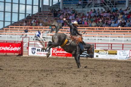 Panoka Rodeo 416