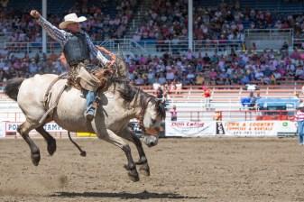 Panoka Rodeo 810