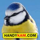 logo-sq-btit_400x400