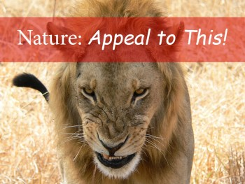 Nature: Appeal to This!