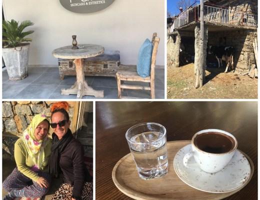 svampejagt i alanya, tyrkisk familie, landsbytur alanya, alanya, gazipasa, ferie i alanya, anderledes ferie i alanya, salatbar alanya, cafeer alanya, tyrkisk morgenmad alanya, alanya blog, alanya blogger, tyrkiet blog, tyrkiet blogger, hverdagen i tyrkiet