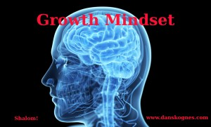 Growth Mindset dan skognes motivation blogger speaker teacher trainer coach educator