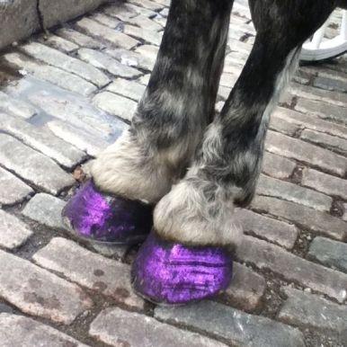 glitter-shoe