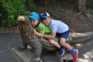 Komodo Dragon   Zoo de Toronto   danslapoche.ca
