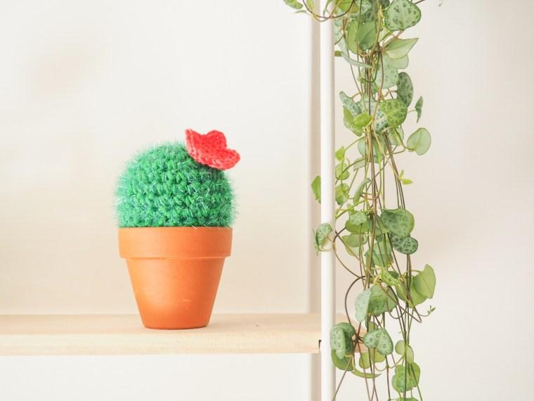 Crocheter un cactus avec le fil Creative Bubble - Tuto