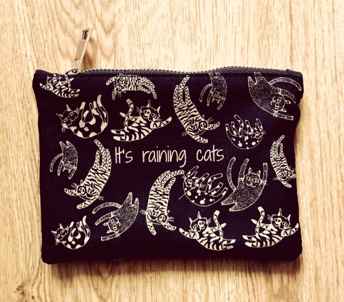 La Beautiful Box The Cat Lady avis blog aufeminin trousse it's raining cats