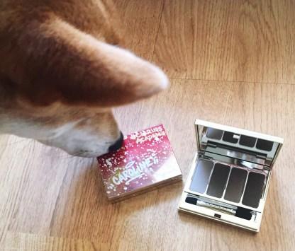 palette 4 fards à paupières Clarins avis blog nude rosewood kenzo chien