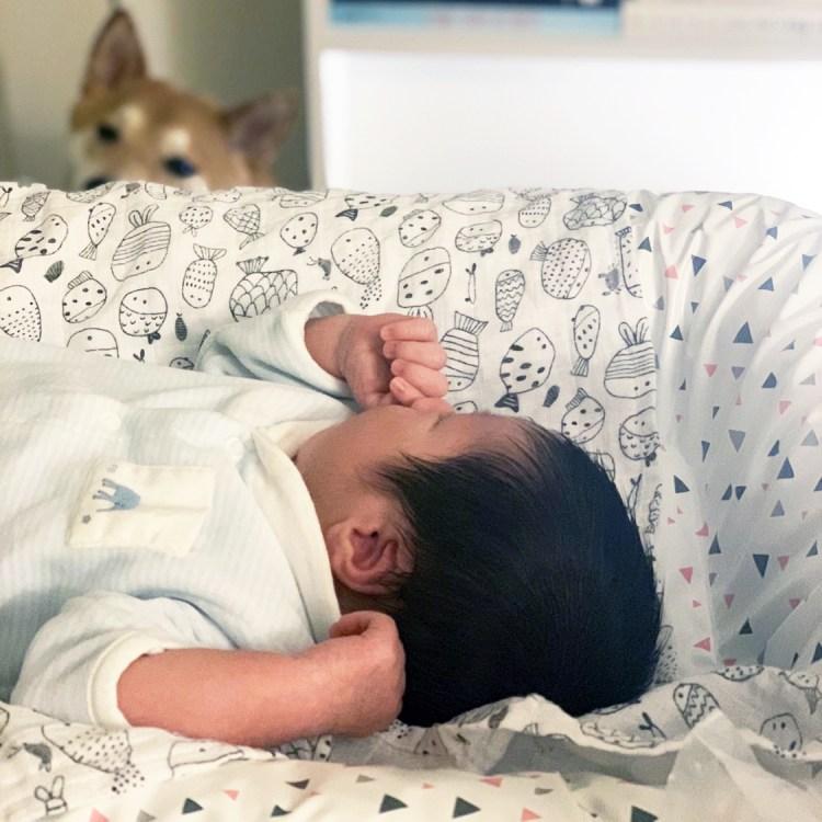 Bienvenue au monde Baby L blog dans mon sac de fille