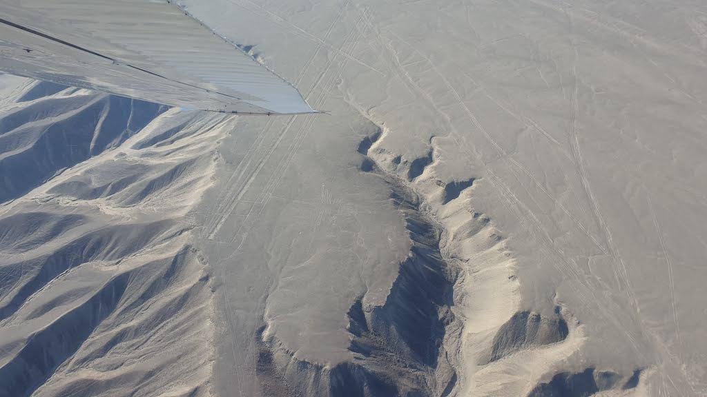 colibri Nazca