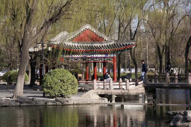 Primavara la Beijing, 2015 H