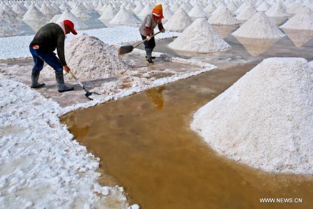 6 Exploatarea de sare satul Yanchi, provincia Gansu