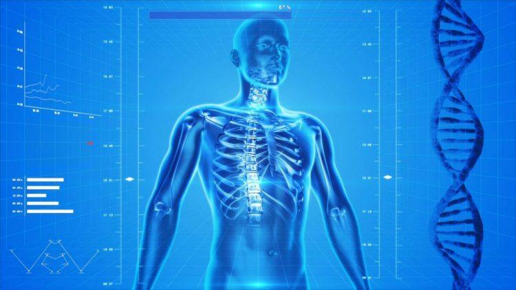 Corp uman intr-o structura cu ADN observandu-se clar coloana vertebrala