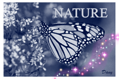 Nature !!!