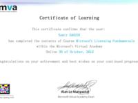 mini_licensing