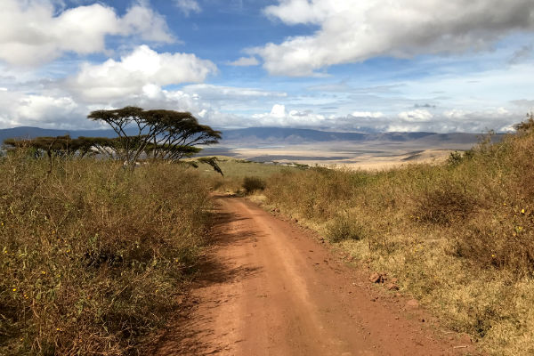 on the road ngorongoro krater noord tanzania