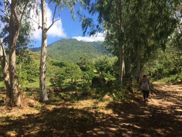 san ramon waterval isla de ometepe