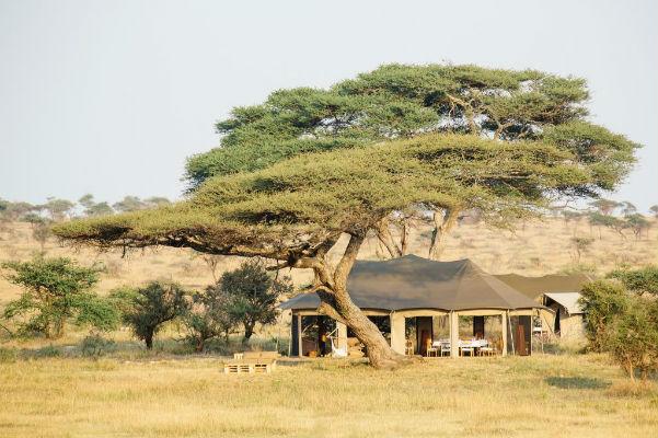 Namiri-Plains-Serengeti-Oosten-Tanzania-Camp