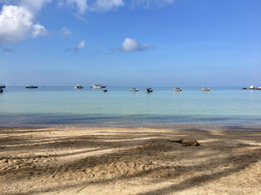 Sairee Beach op Koh Tao