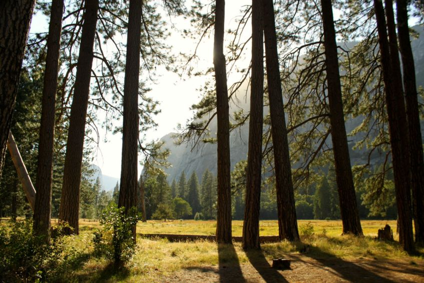Yosemite National Park is ook een geweldige plek in West Amerika en een absoluut bucketlist item
