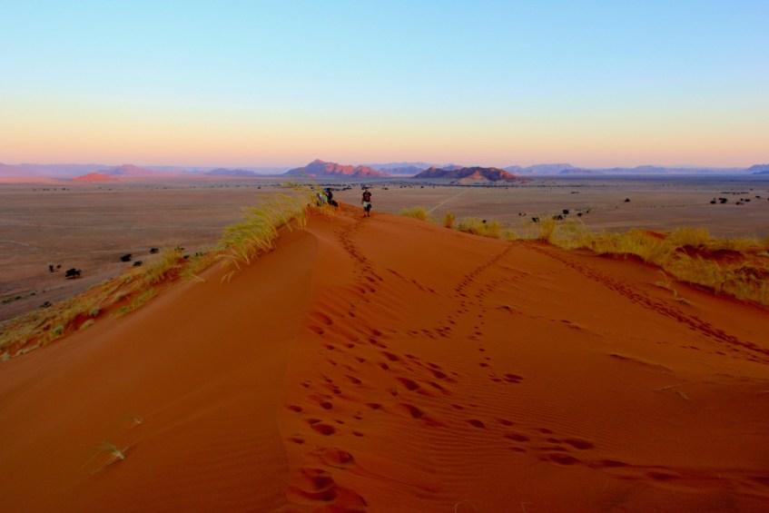 De Sossusvlei is te gek en hoort op je lijst als je namibië bezoekt
