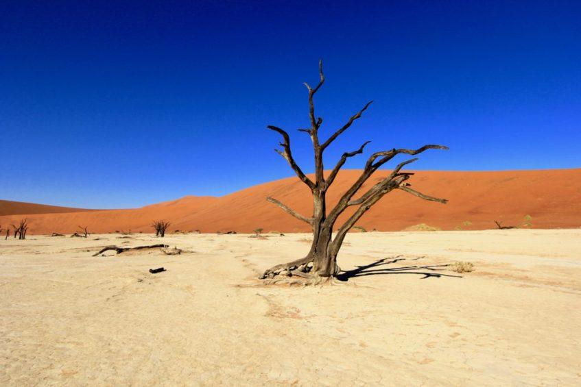 De Hidden Vlei in de Sossusvlei in Namibie moet je zeker zien