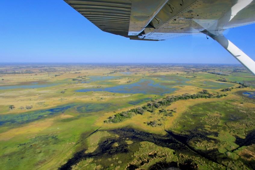 De prachtige Okavango Delta in Botswana hoort op een ieder zijn bucketlist