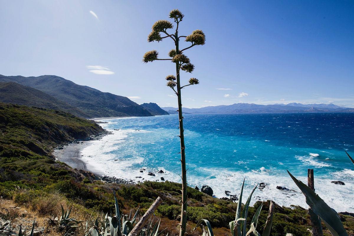 Maak een mooie roadtrip door Corsica bezoek zeker Cap Corse