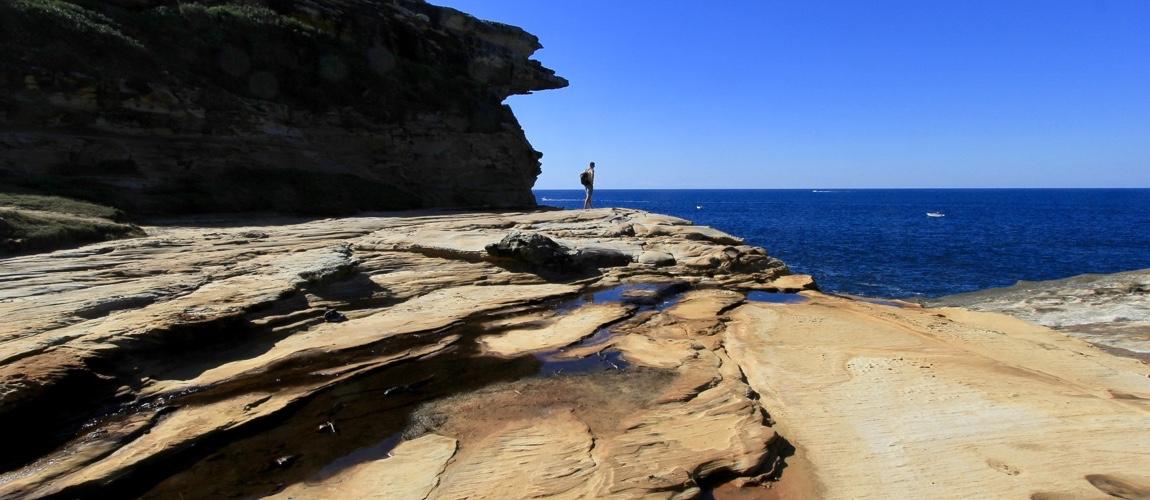 Wandelen in het Royal National Park is een goede dagtrip vanuit Sydney