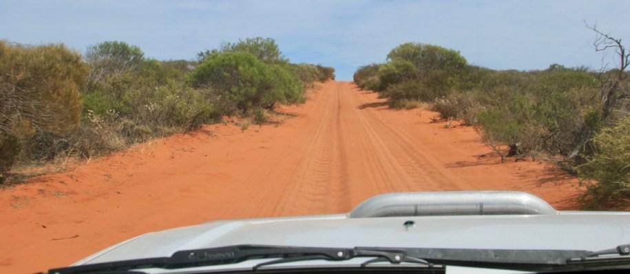 12 redenen waarom je absoluut nóóit naar Australië moet