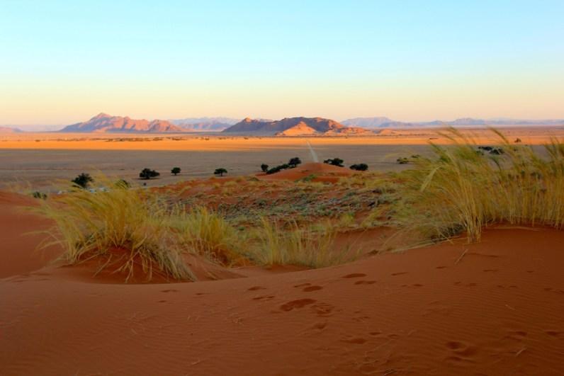 Praktische tips Namibië- voorbereid beginnen aan een onvergetelijke 4x4 roadtrip Namibië