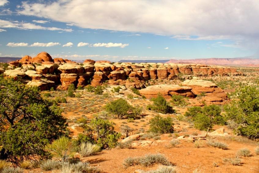Canyonlands is een bijzonder park aan de westkust van Amerika