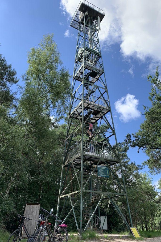 Uitzicht vanaf de brandtoren op de Kalmthoutse Heide