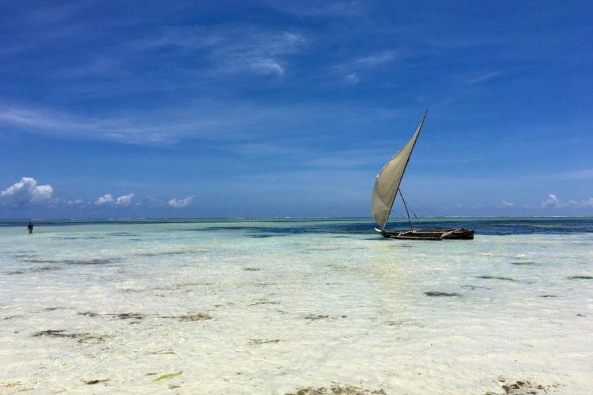 De ideale route Tanzania voor 2 tot 3 weken safari in Afrika