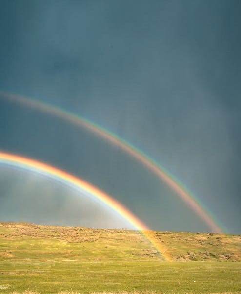 Chasing rainbows and growing your business