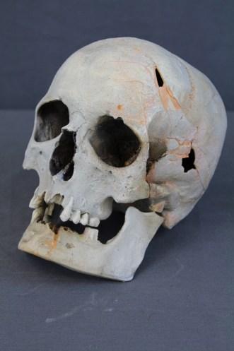 custom cracked skull 9