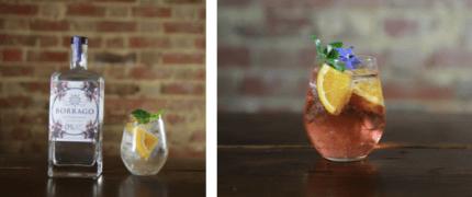 Borrago Cocktails