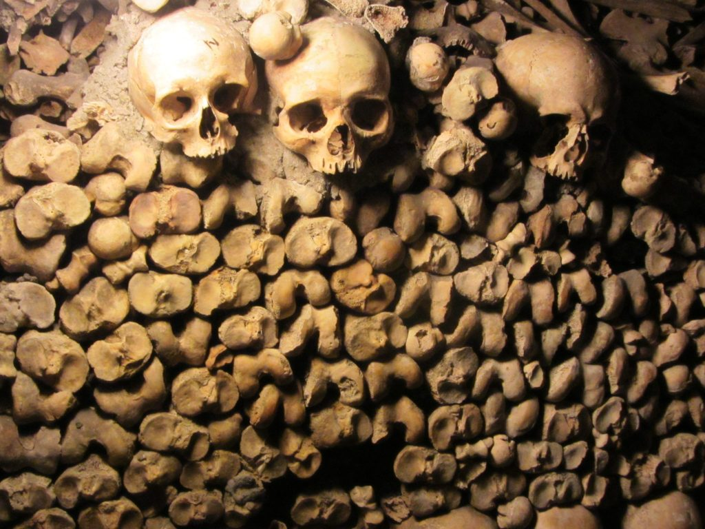 Skulls and Bones in the Catacombs in Paris